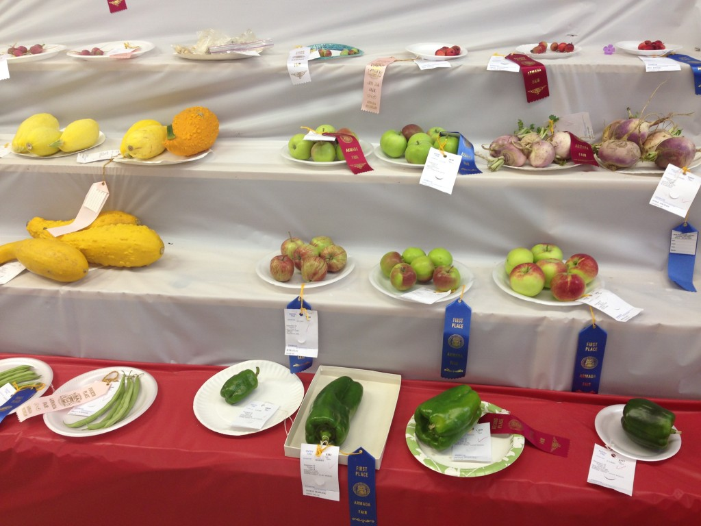 Prize-winning veggies, *not* free samples
