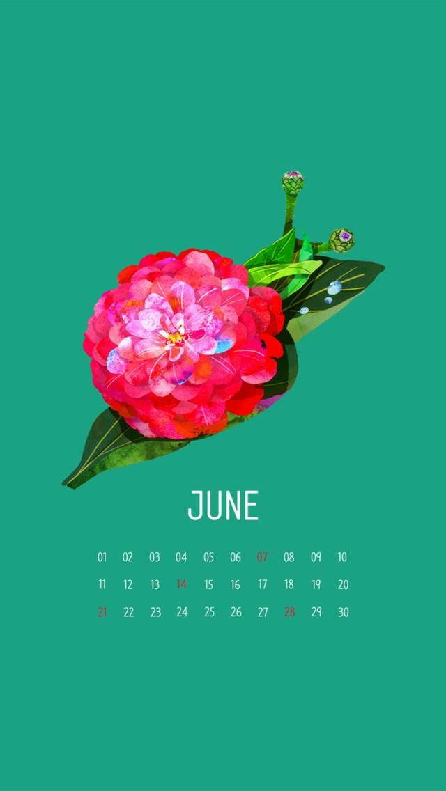 2015-05-29_Z3vCnvn5