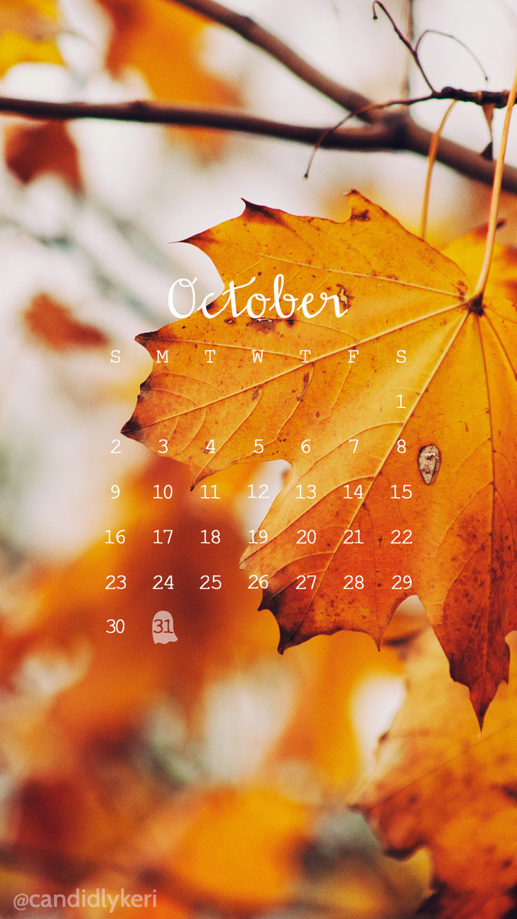 October Calendar Wallpaper Iphone : Iphone wallpaper the dress decoded page