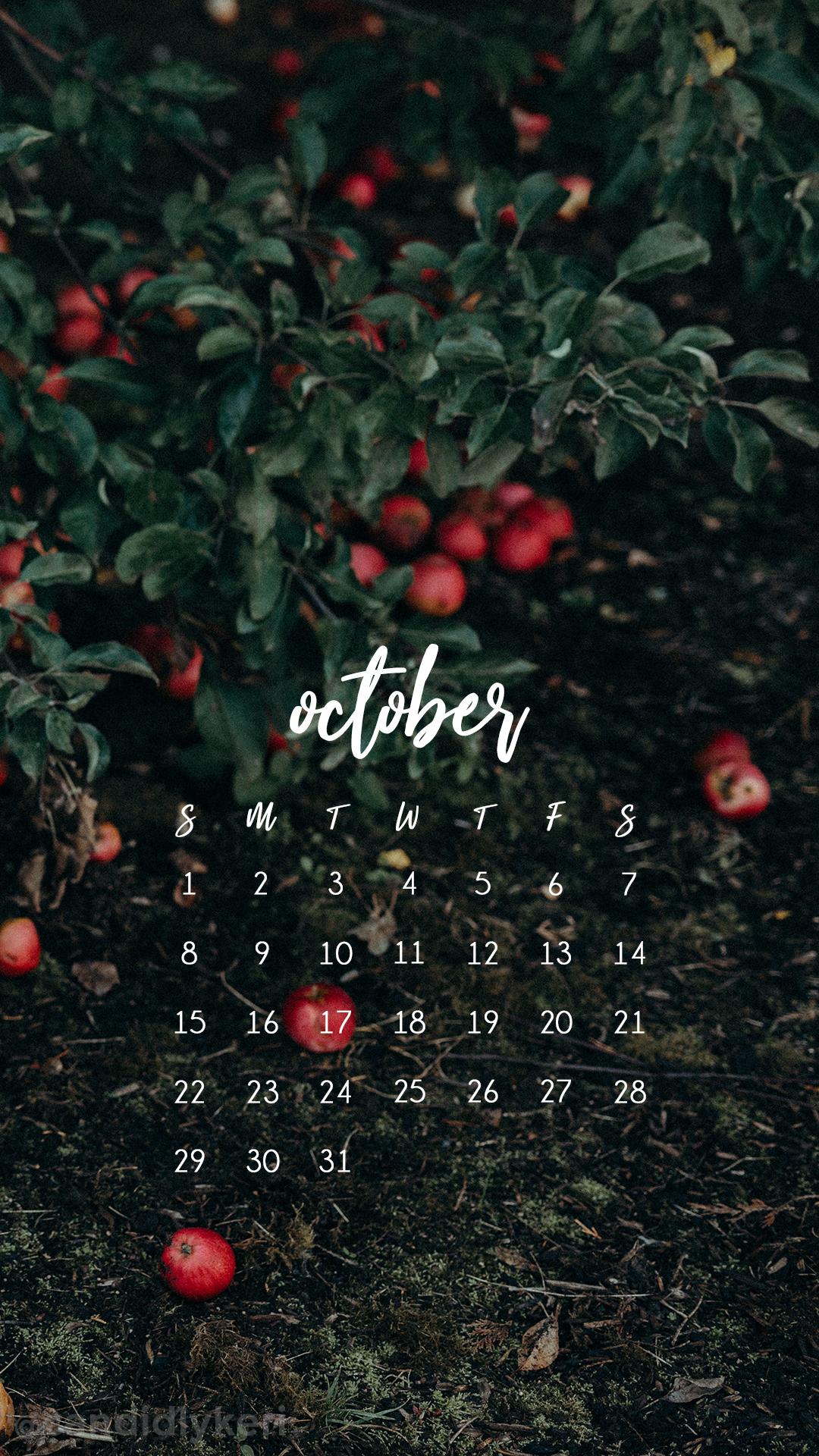 2017_October8M