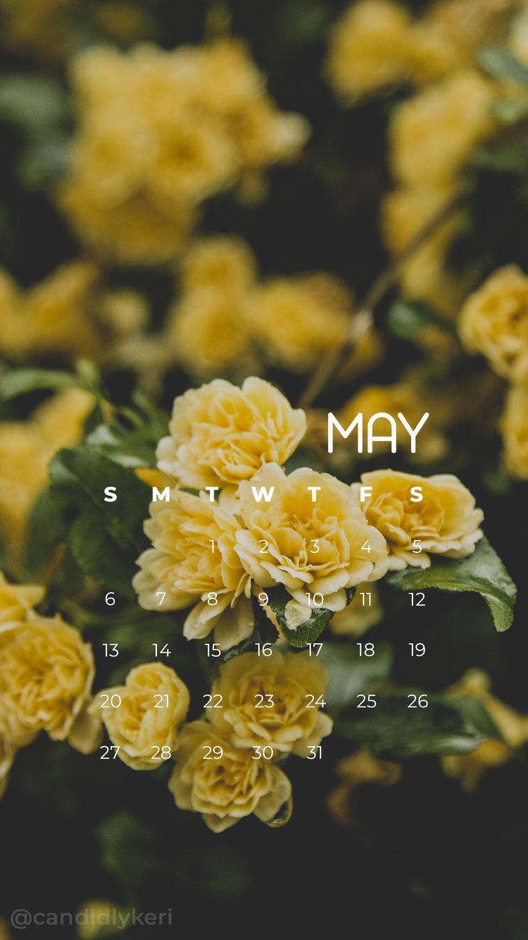 2018_May3M