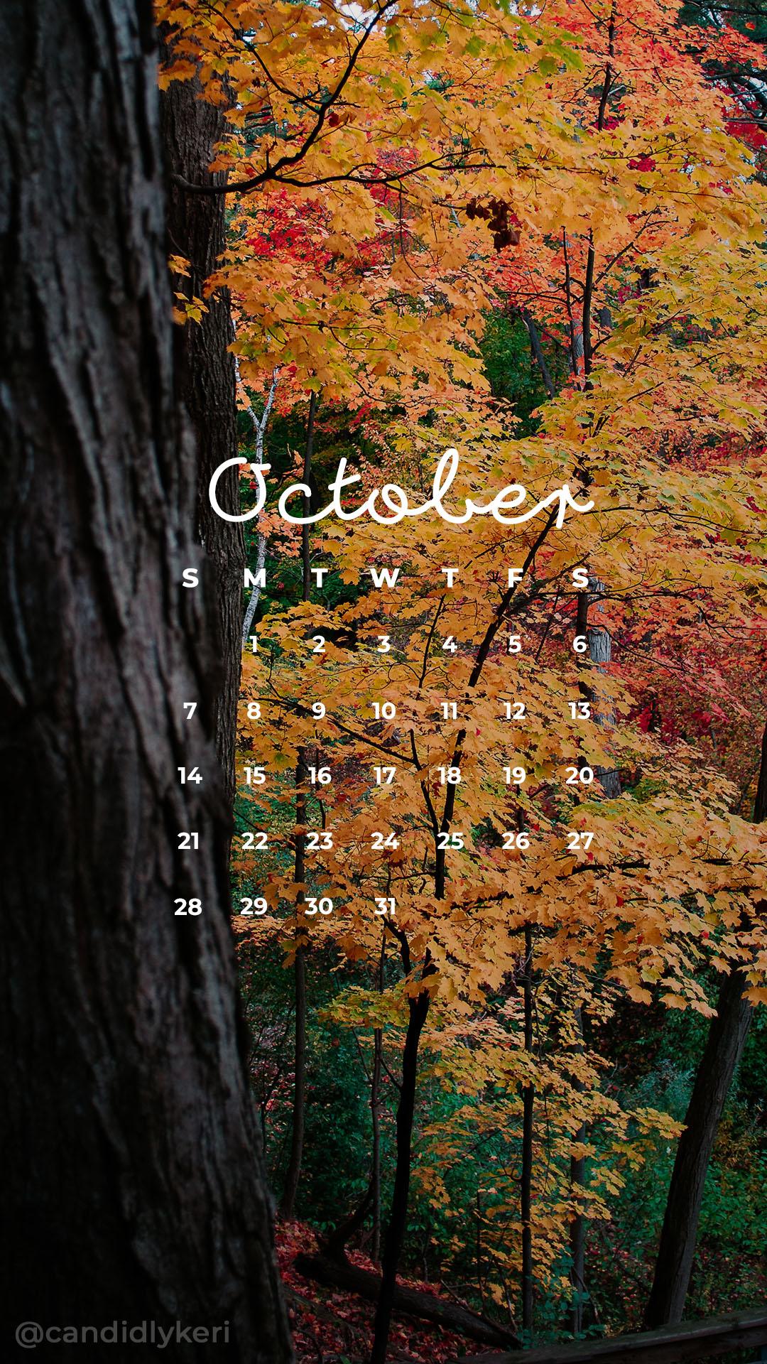 2018_October5M