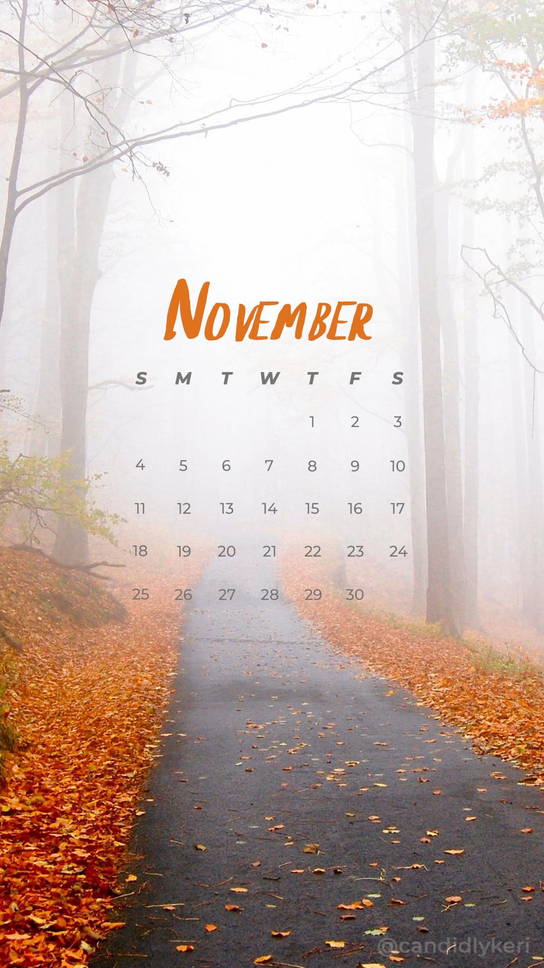 2018_November3M